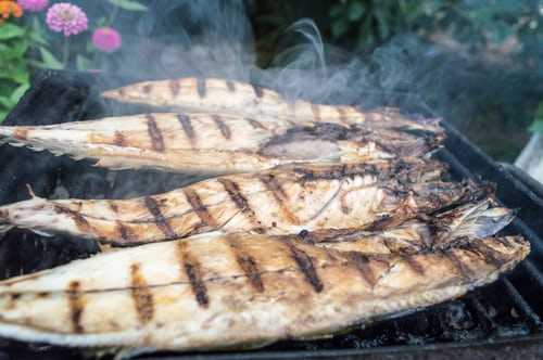 Why Eat Freshly Grilled Fish